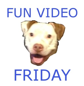 Fun-Video-Friday